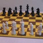 Zapisy na indywidualne zajęcia szachowe